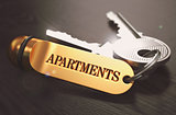 Keys with Word Apartments on Golden Label.