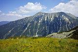 Green hils of Todorka peak, Pirin Mountain