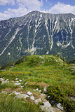 Green hils of Todorka peak, Pirin Mountain