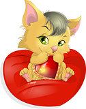 cats and heart