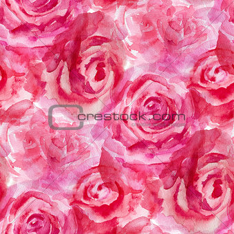 Watercolor flowers. Roses