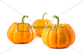 Small decorative pumpkins