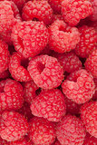 Raspberry closeup