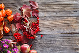 Fall harvesting viburnum on rustic wooden table