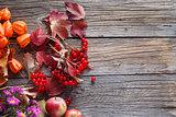 Fall harvesting viburnum on rustic wooden table