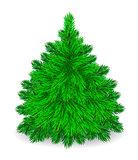 Furry  Tree.