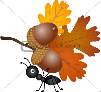 Ant carrying autumn acorns