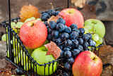 Fresh ripe autumn apples and grapes