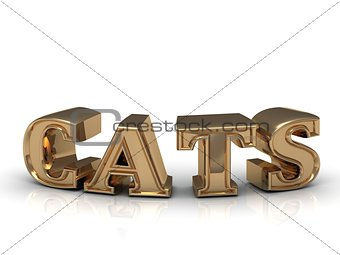 CATS - inscription of bright gold letters