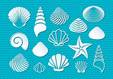 White sea shells icons
