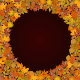 Circle shaped autumn leaves background