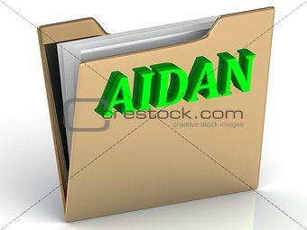 AIDAN- Name and Family bright letters on gold folder