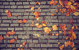 texture with paving stones and yellow leaves
