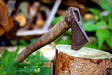 Old ax stuck in a tree stump