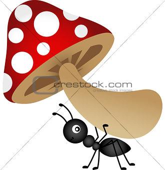 Ant carrying mushroom