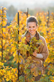 Woman winegrower standing among grape vines in autumn vineyard