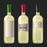 Sample of empty bottles for wine