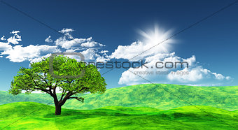 3D landscape with tree