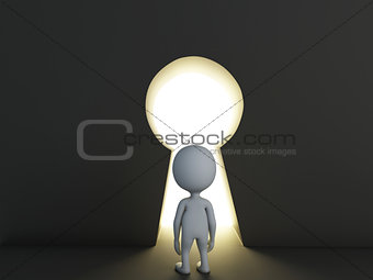 3d white people looking through keyhole. Success concept