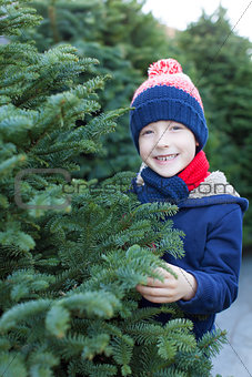 boy shopping for christmas tree