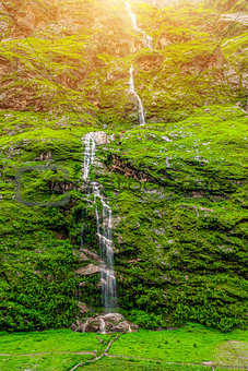 waterfall and green plants in Nepa