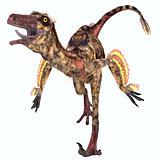 Troodon Reptile