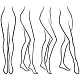 Set of lower parts of graceful female body