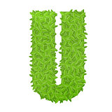 Uppecase letter U consisting of green leaves