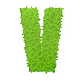 Uppecase letter V consisting of green leaves
