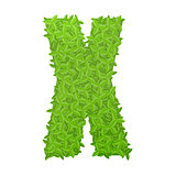 Uppecase letter X consisting of green leaves