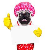 dog doing household chores