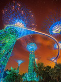 The Supertree at Gardens by the Bay, Singapore