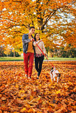 Happy young couple with two cute dogs walking in park