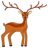 deer isolated vector