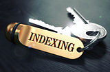 Indexing - Bunch of Keys with Text on Golden Keychain.