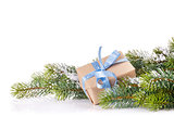 Christmas tree branch and gift box