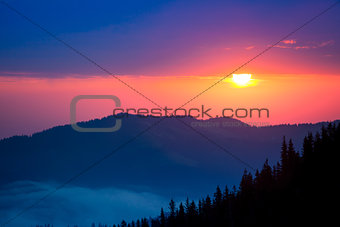 Firtrees in mountains on sunrise background