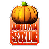autumn sale label with fall pumpkin