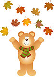 Teddy bear picking up fall leaves