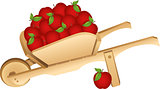 Wooden wheelbarrow full with red apples