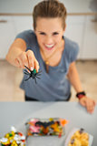 Closeup on spider toy in hand of woman preparing halloween treat