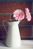 Gerber Daisy in vase