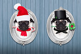 christmas dog as  santa claus and chimney sweeper