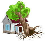 House destroyed. Tree fell on house. Cracks in walls of home. Property insurance.