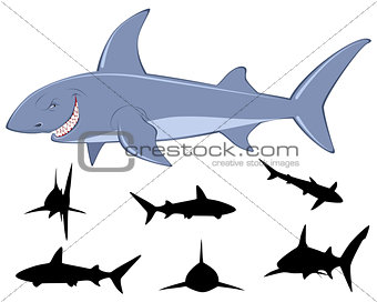 Six sharks silhouettes