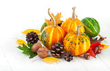 Autumnal pumpkins with yellow leaves