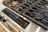 New Modern Natural Gas Range Stove