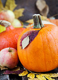 Fresh autumn pumpkins