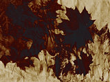 Grunge Leaves Background