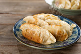 Asian meal pan fried dumplings